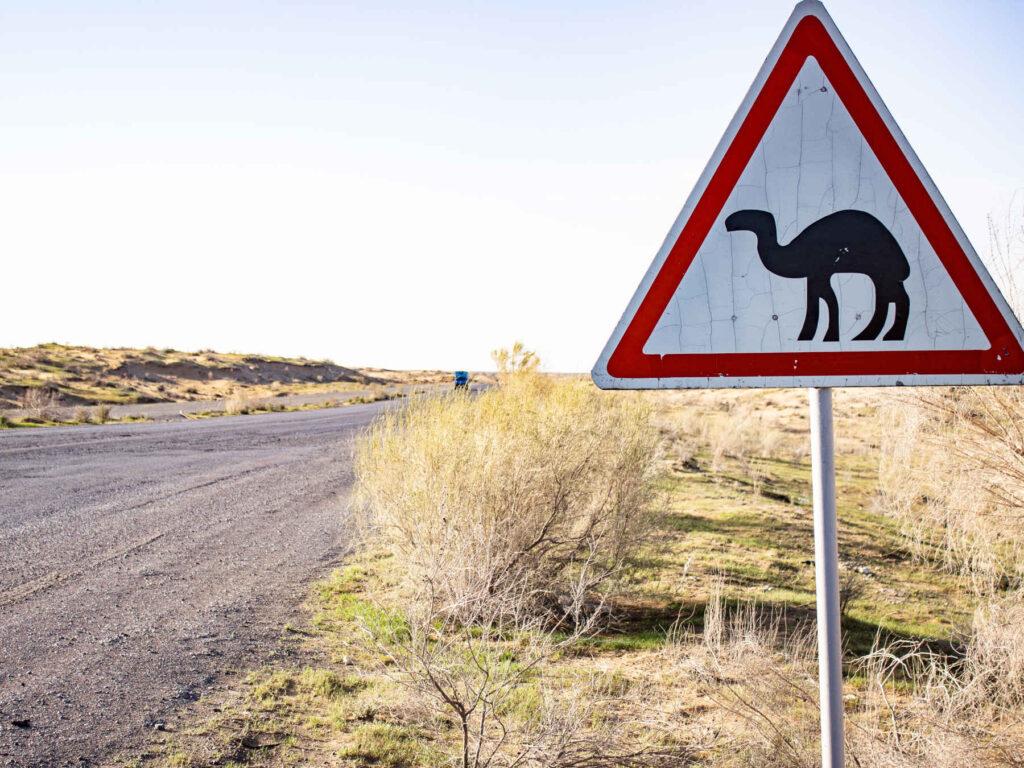 Kamel skilt i ørkenen