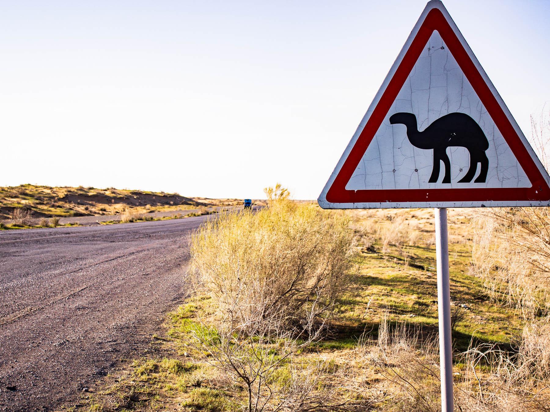 5 gode råd når du rejser til Turkmenistan