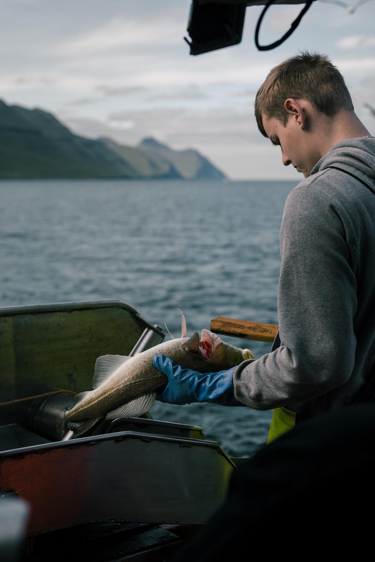 Ung færøsk fisker