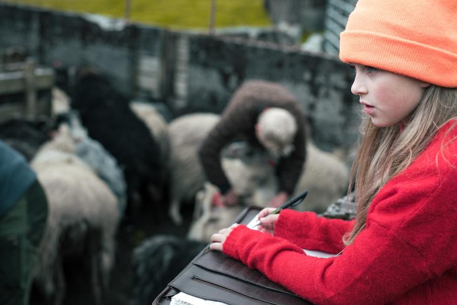 Derfor skal du rejse til Færøerne med Above Borders